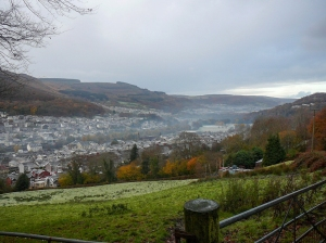 mist over mountain ash