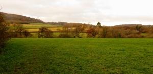 casehill view