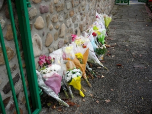 flowers in memorial garden