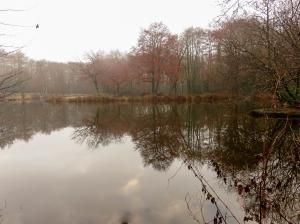 llanerch lake