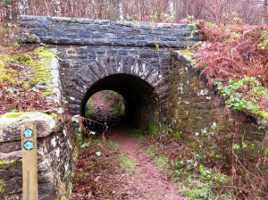 railway bridge on brecon mountain railway