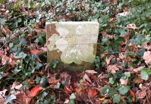 gravestone in st curig's churchyard