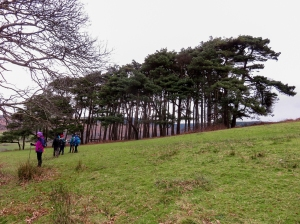 mynydd y castell hillfort