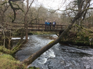 group crossing the footbridge over the river mellte