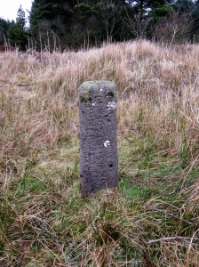 bodvoc stone
