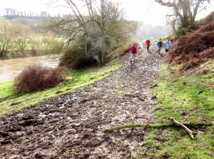 muddy tracks en route to welsh bicknor