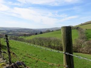 Views towards Tonyrefail
