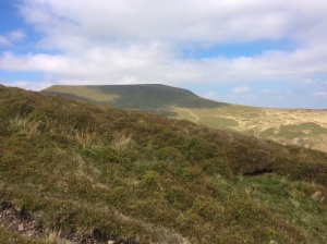 Gazing towards Waun Rydd and Carn Pica