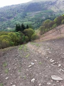 The Kamekaze bike track