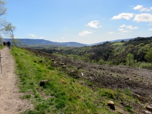 Deforested area and Vale of Neath