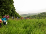 Climbing up through fields in the Lydbrook valley