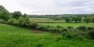 Michaelston Valley