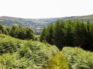 Climbing above the Rhondda Fawr
