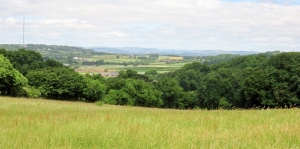 View inland from Dinas ridgeway