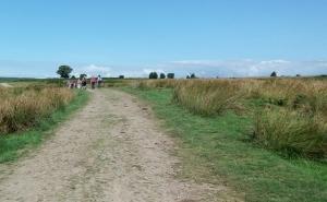 Crossing Gelligaer Common