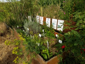Elizabethan Orchard herb garden