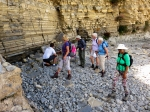 Lavernock beach dinasaur find
