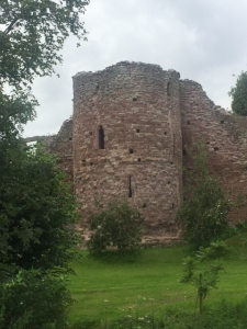 Wilton Castle remains
