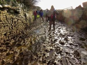 Candleston Farm mud