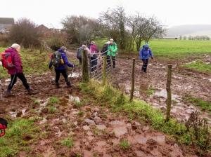 Mud Pentrebane Farm