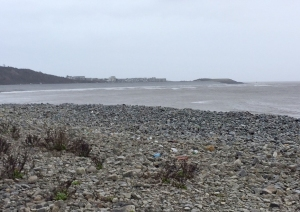 Porthkerry Bay towards Cold Knap