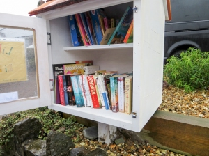 The free library