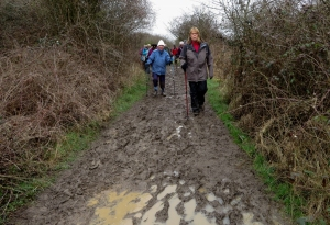 Muddy paths at Pleasant Harbour