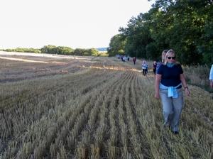 Crossing fields to Vianshill