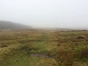 All surrounding views hidden by mist