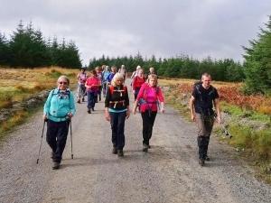 Crossing Mynydd Margam