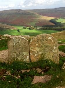Boundary Stones Pentwyn Glas