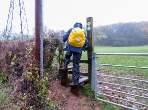 Using the repaired stile