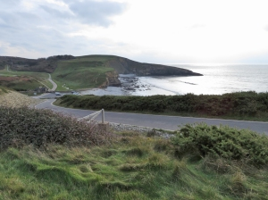 Clifftop above Trwyn y Witch and Dunraven Bay