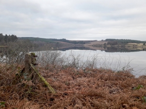 the usk reservoir