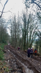 Tramping through the mud in the woods