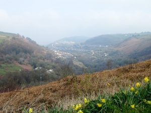 View up to New Tredegar