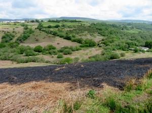 Scorched hillside above Cwm Ogwr Fach