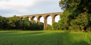 Through the meadow to the viaduct