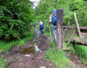 Muddy paths Cwm Dimbath