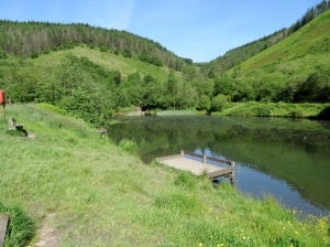 Top lake at Clydach Vale Country Park
