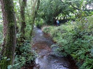 Cadoxton River