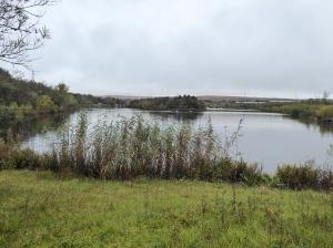 Bryn Bach Lake