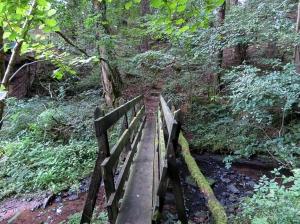 Footbridge over Penarth Brook