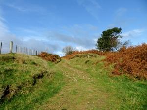 Climbing up to Mynydd Coedbychan