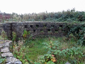 The old ruined dovecote Cosmeston