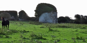 The ruined Dovecote