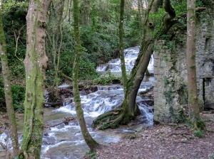 Nash Brook thundering past the old corn mill