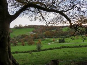 Parkland at Llanharan House