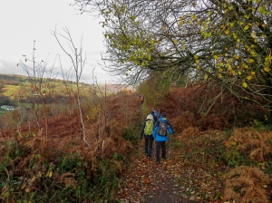 Climbing up towards Mynydd Merthyr Common