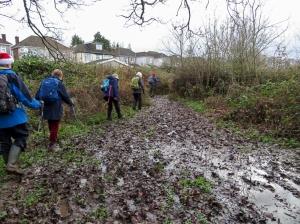 Mud at Nant Fawr